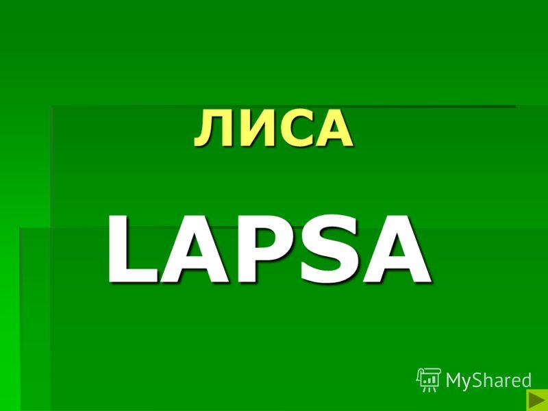ЛИСА LAPSA
