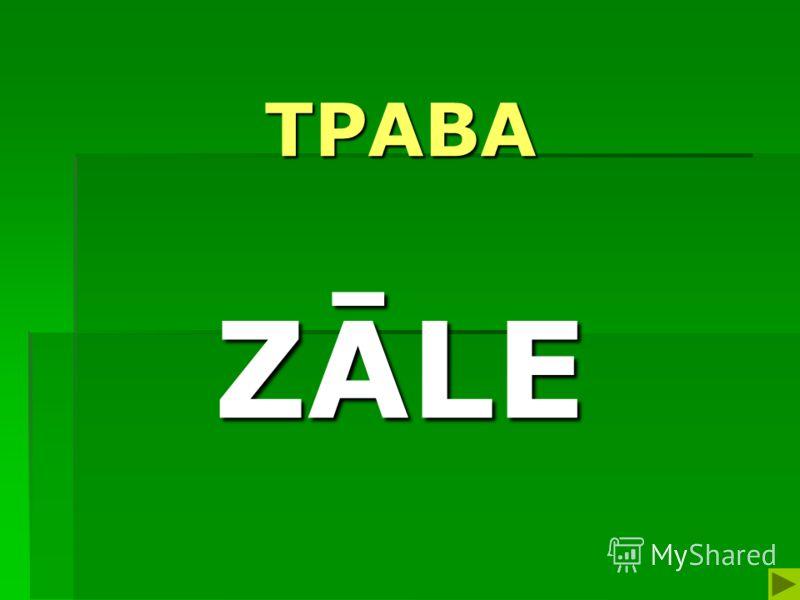 ТРАВА ZĀLE