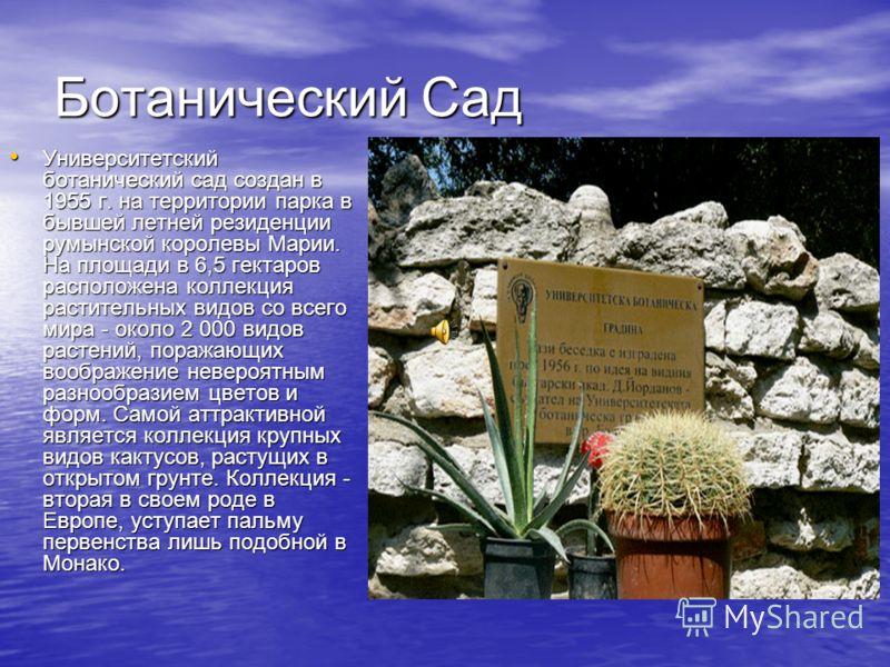 Ботанический Сад Университетский ботанический сад создан в 1955 г. на территории парка в бывшей летней резиденции румынской королевы Марии. На площади в 6,5 гектаров расположена коллекция растительных видов со всего мира - около 2 000 видов растений,