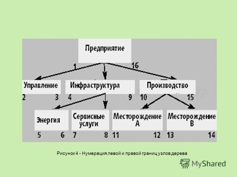 Рисунок 4 - Нумерация левой и правой границ узлов дерева