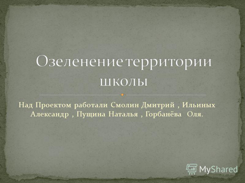 Над Проектом работали Смолин Дмитрий, Ильиных Александр, Пущина Наталья, Горбанёва Оля.