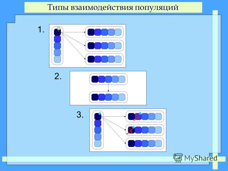 Типы взаимодействия популяций 1. 2. 3.