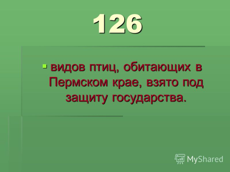 126 видов птиц, обитающих в Пермском крае, взято под защиту государства. видов птиц, обитающих в Пермском крае, взято под защиту государства.