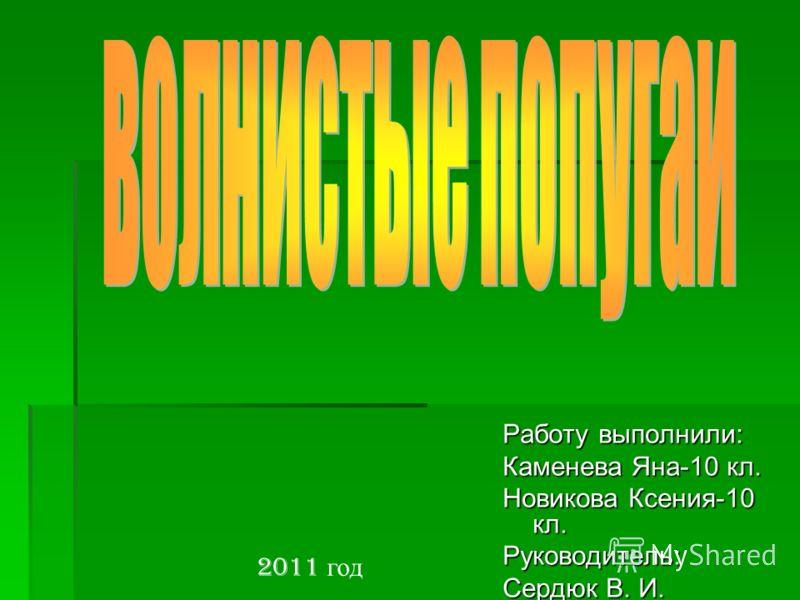 Работу выполнили: Каменева Яна-10 кл. Новикова Ксения-10 кл. Руководитель: Сердюк В. И. 2011 год