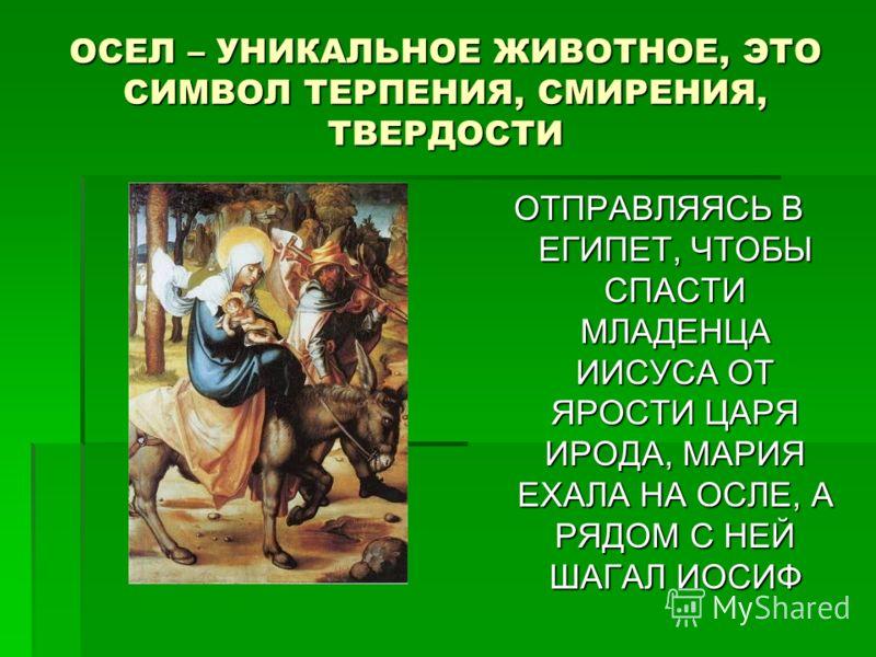 ОСЕЛ – УНИКАЛЬНОЕ ЖИВОТНОЕ, ЭТО СИМВОЛ ТЕРПЕНИЯ, СМИРЕНИЯ, ТВЕРДОСТИ ОТПРАВЛЯЯСЬ В ЕГИПЕТ, ЧТОБЫ СПАСТИ МЛАДЕНЦА ИИСУСА ОТ ЯРОСТИ ЦАРЯ ИРОДА, МАРИЯ ЕХАЛА НА ОСЛЕ, А РЯДОМ С НЕЙ ШАГАЛ ИОСИФ