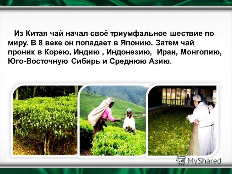Из Китая чай начал своё триумфальное шествие по миру. В 8 веке он попадает в Японию. Затем чай проник в Корею, Индию, Индонезию, Иран, Монголию, Юго-Восточную Сибирь и Среднюю Азию.