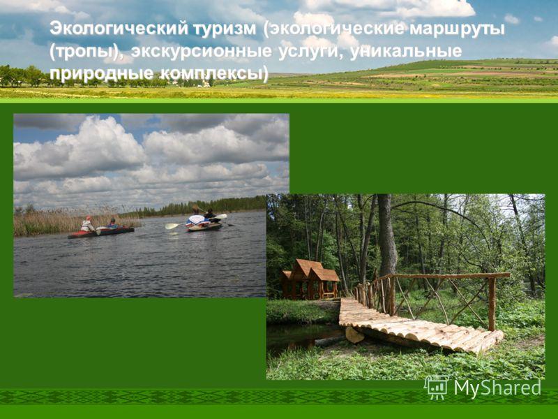 Экологический туризм (экологические маршруты (тропы), экскурсионные услуги, уникальные природные комплексы)