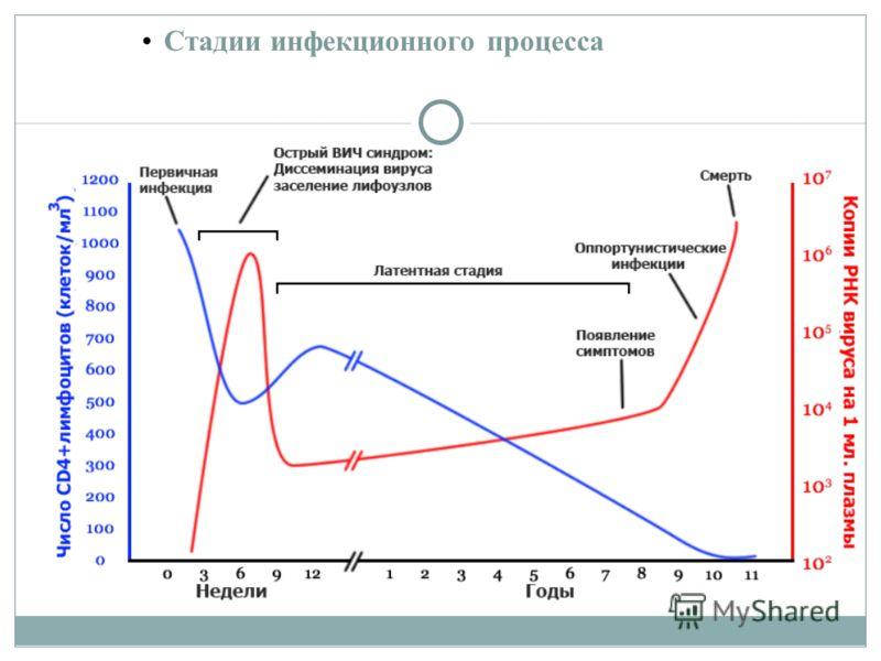 Стадии инфекционного процесса