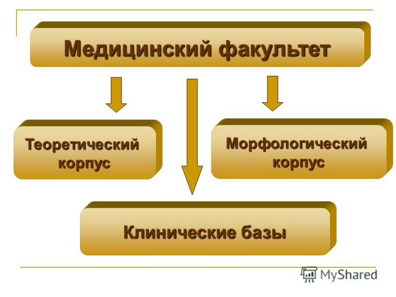 Медицинский факультет Морфологическийкорпус Теоретическийкорпус Клинические базы