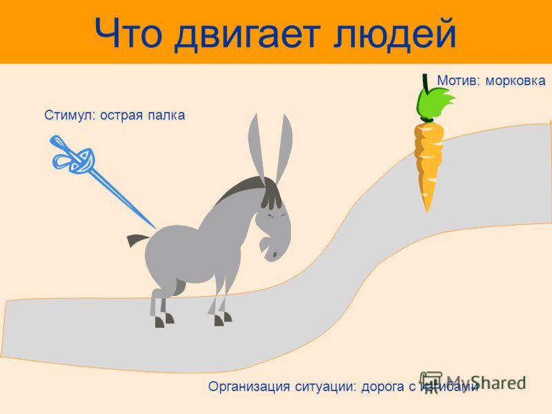 Что двигает людей Мотив: морковка Cтимул: острая палка Организация ситуации: дорога с изгибами