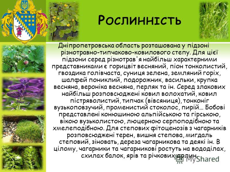Р ОСЛИННІСТЬ Дніпропетровська область розташована у підзоні різнотравно-типчаково-ковилового степу. Для цієї підзони серед різнотрав'я найбільш характерними представниками є горицвіт весняний, піон тонколистий, гвоздика голівчаста, суниця зелена, зем