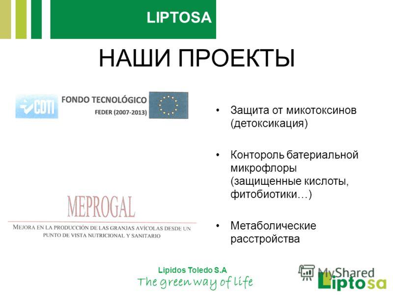 НАШИ ПРОЕКТЫ Защита от микотоксинов (детоксикация) Контороль батериальной микрофлоры (защищенные кислоты, фитобиотики…) Метаболические расстройства Lipidos Toledo S.A The green way of life LIPTOSA