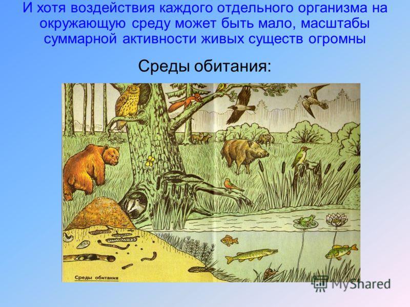 И хотя воздействия каждого отдельного организма на окружающую среду может быть мало, масштабы суммарной активности живых существ огромны Среды обитания: