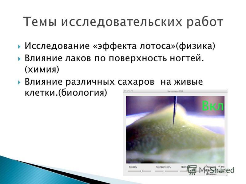 Исследование «эффекта лотоса»(физика) Влияние лаков по поверхность ногтей. (химия) Влияние различных сахаров на живые клетки.(биология)