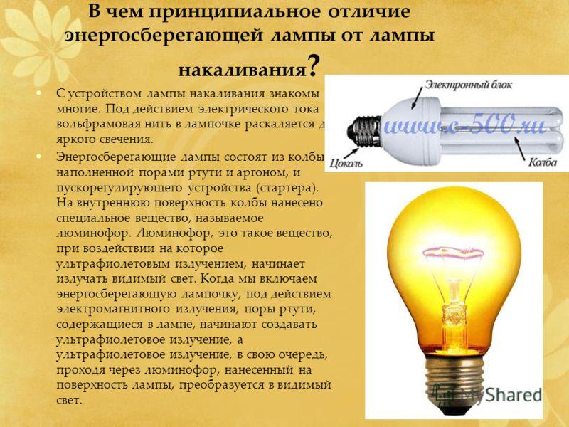 В чем принципиальное отличие энергосберегающей лампы от лампы накаливания ? С устройством лампы накаливания знакомы многие. Под действием электрического тока вольфрамовая нить в лампочке раскаляется до яркого свечения. Энергосберегающие лампы состоят