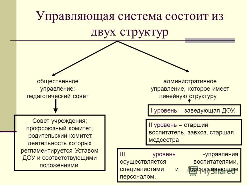 Управляющая система состоит из двух структур общественное управление: педагогический совет административное управление, которое имеет линейную структуру. Совет учреждения; профсоюзный комитет; родительский комитет, деятельность которых регламентирует