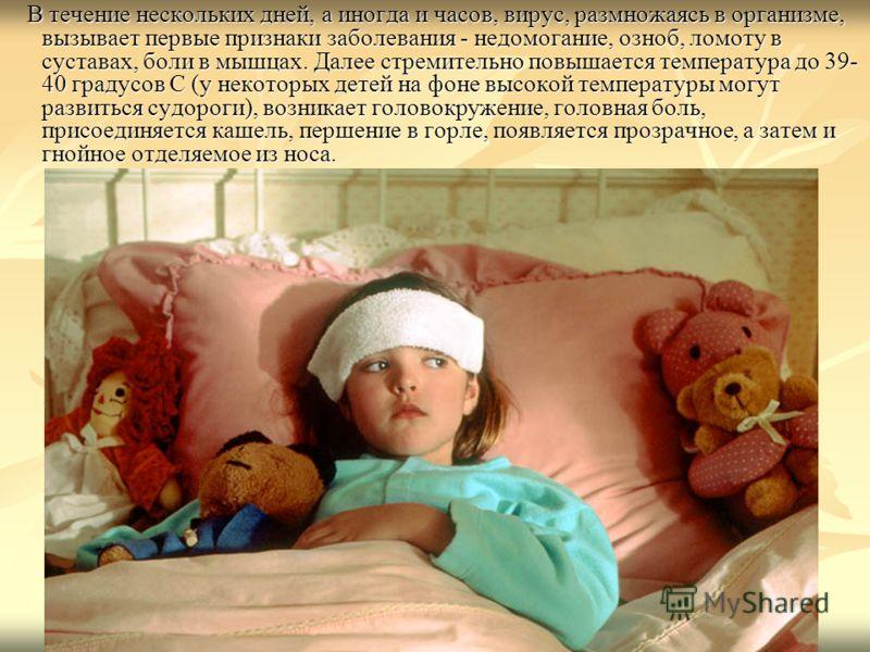 В течение нескольких дней, а иногда и часов, вирус, размножаясь в организме, вызывает первые признаки заболевания - недомогание, озноб, ломоту в суставах, боли в мышцах. Далее стремительно повышается температура до 39- 40 градусов С (у некоторых дете