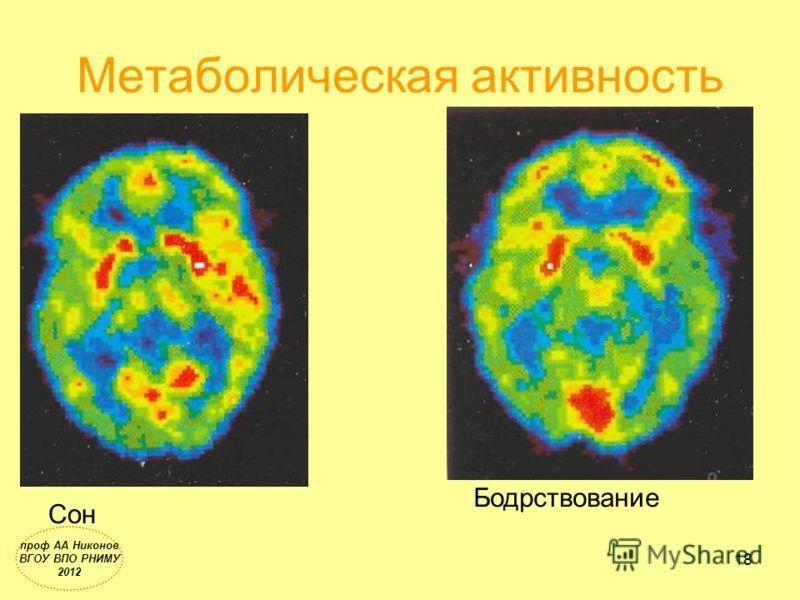 Метаболическая активность Сон Бодрствование 18 проф АА Никонов ВГОУ ВПО РНИМУ 2012