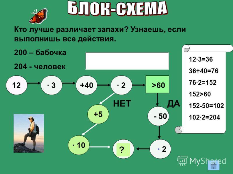 12 · 3· 3+40 · 10 +5 ? - 50 · 2· 2>60 ДА · 2· 2 НЕТ Кто лучше различает запахи? Узнаешь, если выполнишь все действия. 200 – бабочка 204 - человек 12·3=36 36+40=76 76·2=152 152>60 152-50=102 102·2=204
