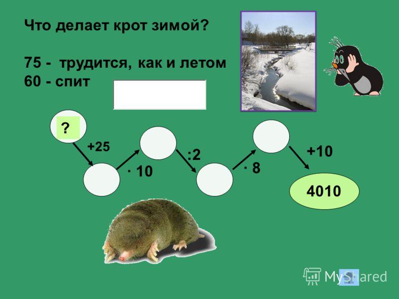 12 +25 ? · 10 :2 · 8 +10 4010 Что делает крот зимой? 75 - трудится, как и летом 60 - спит