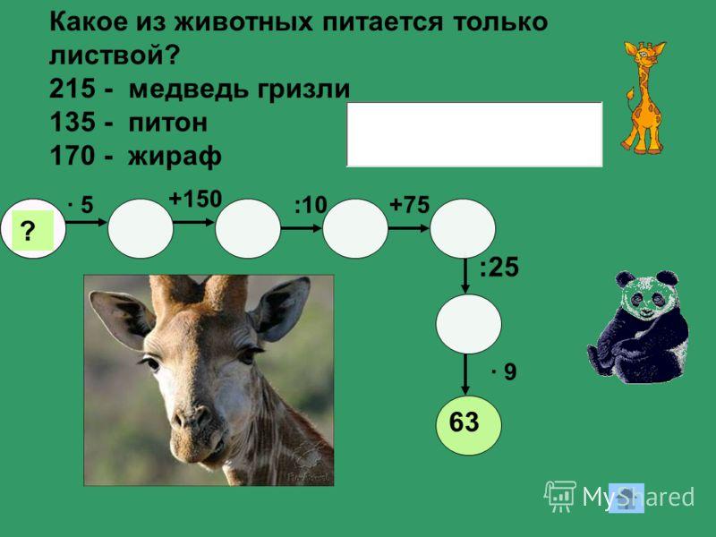 12 · 5· 5 +150 ? +75:10 · 9· 9 :25 63 Какое из животных питается только листвой? 215 - медведь гризли 135 - питон 170 - жираф