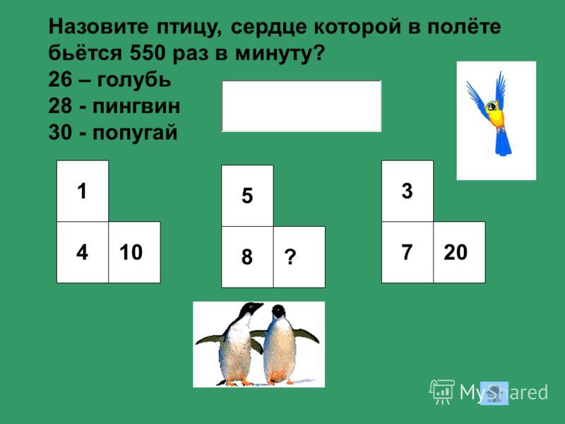 1 410 5 8? 3 720 Назовите птицу, сердце которой в полёте бьётся 550 раз в минуту? 26 – голубь 28 - пингвин 30 - попугай