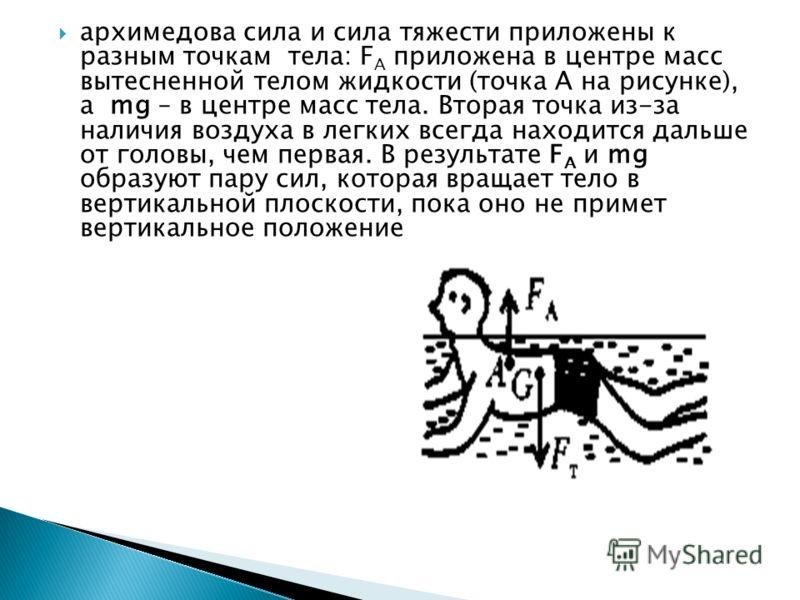 архимедова сила и сила тяжести приложены к разным точкам тела: F A приложена в центре масс вытесненной телом жидкости (точка А на рисунке), a mg – в центре масс тела. Вторая точка из-за наличия воздуха в легких всегда находится дальше от головы, чем
