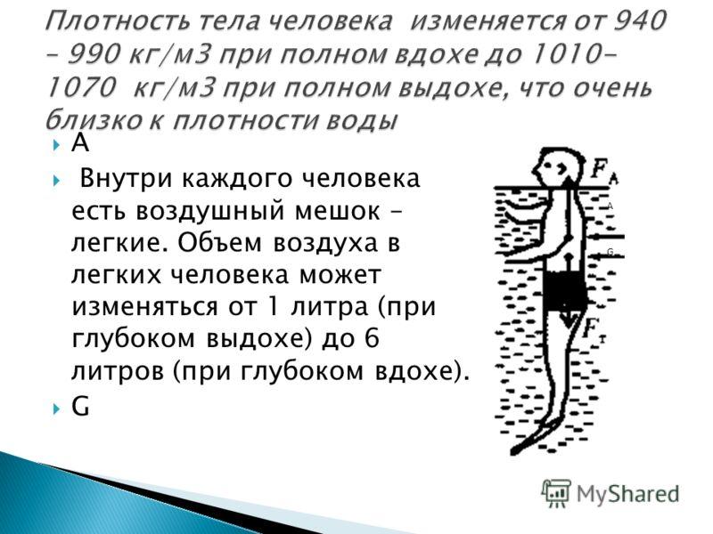 А Внутри каждого человека есть воздушный мешок – легкие. Объем воздуха в легких человека может изменяться от 1 литра (при глубоком выдохе) до 6 литров (при глубоком вдохе). G АGАG