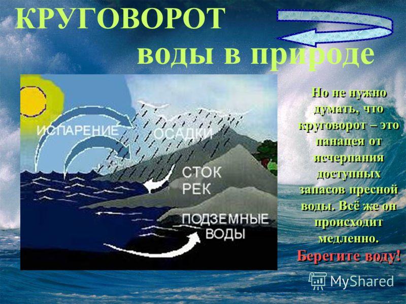 Вода в организме человека Без воды человек может прожить только 3 дня, в то время как без пищи 30-50 дней. В разных органах человека содержатся различные доли воды: Головной мозг – серое вещество 83%, белое вещество 70%; Спинной мозг 74,8% Почки 82%