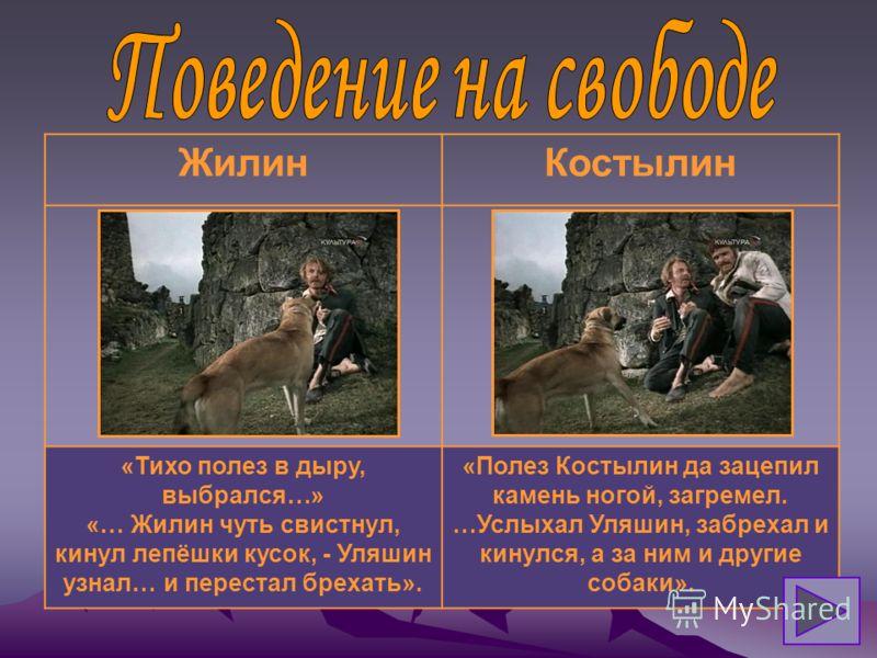 ЖилинКостылин - знакомство с местностью; - работа над подкопом; - прикормка собаки; - запас провизии Ни в чём участия не принимал.