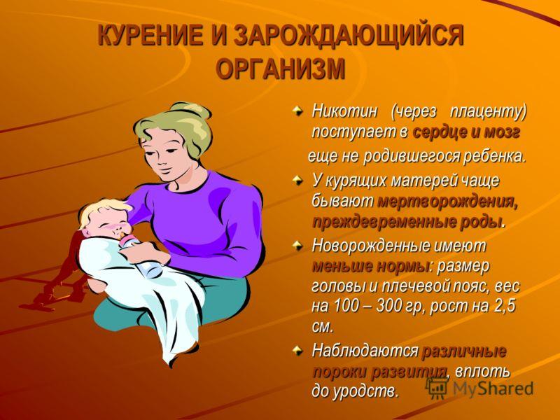 КУРЕНИЕ И ЗАРОЖДАЮЩИЙСЯ ОРГАНИЗМ Никотин (через плаценту) поступает в сердце и мозг еще не родившегося ребенка. еще не родившегося ребенка. У курящих матерей чаще бывают мертворождения, преждевременные роды. Новорожденные имеют меньше нормы : размер