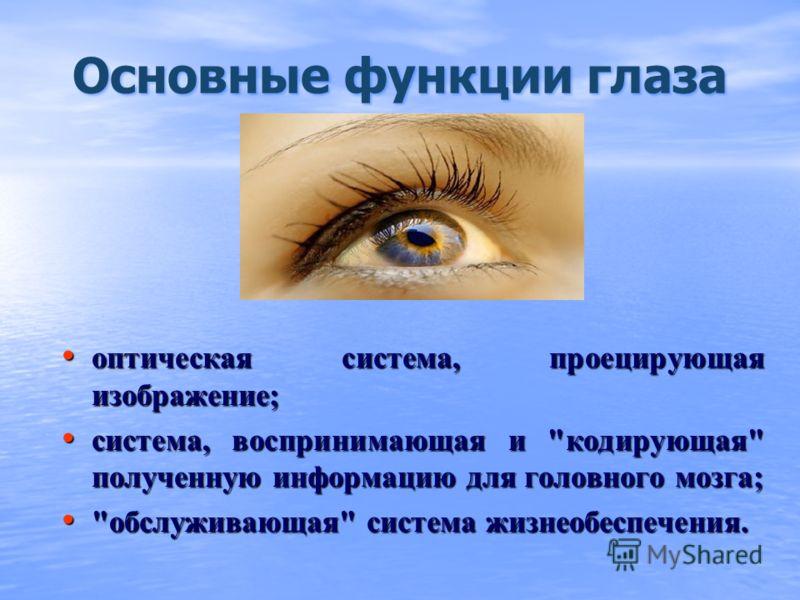 диаметр глаза 22мм диаметр глаза 22мм количество палочек 130 млн количество палочек 130 млн количество колбочек (RGB) 7 млн количество колбочек (RGB) 7 млн оптическая сила глаза 58 дптр оптическая сила глаза 58 дптр показатель преломления хрусталика