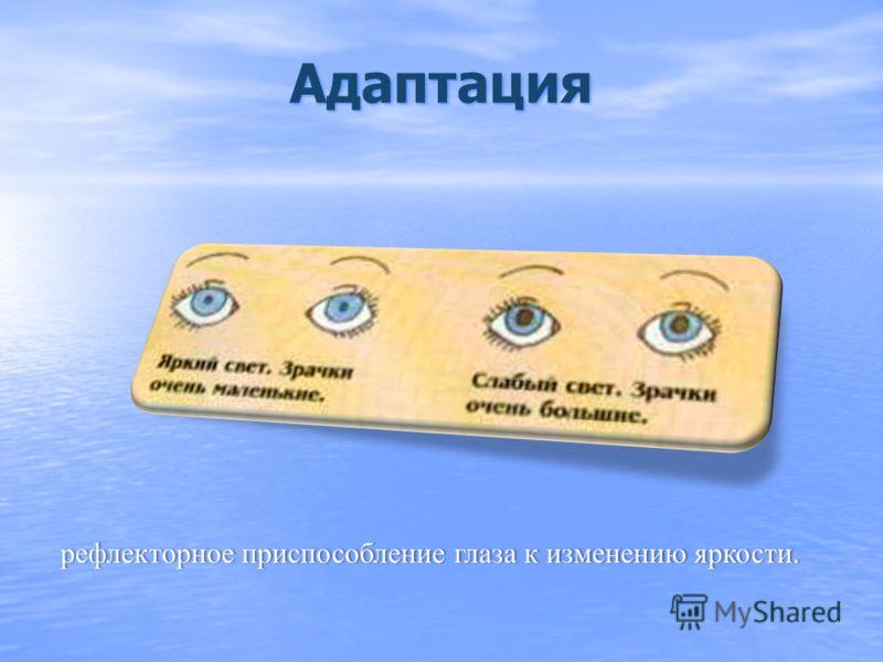 способность глаза приспосабливаться к видению как на близком, так и на далеком расстоянии, за счет изменения кривизны (а значит и оптической силы) хрусталика. Предел аккомодации – 10 см от глаза. Расстояние наилучшего видения (без напряжения) для нор