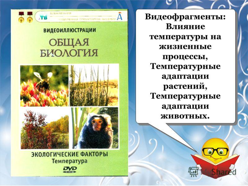 Видеофрагменты: Влияние температуры на жизненные процессы, Температурные адаптации растений, Температурные адаптации животных. Видеофрагменты: Влияние температуры на жизненные процессы, Температурные адаптации растений, Температурные адаптации животн