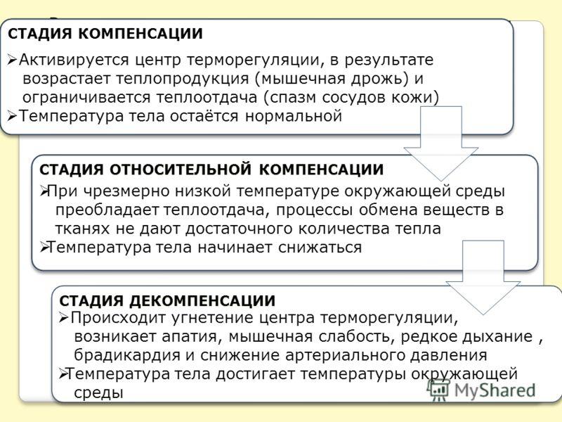 Развитие гипотермии происходит в три стадии: СТАДИЯ КОМПЕНСАЦИИ СТАДИЯ ОТНОСИТЕЛЬНОЙ КОМПЕНСАЦИИ СТАДИЯ ДЕКОМПЕНСАЦИИ Активируется центр терморегуляции, в результате возрастает теплопродукция (мышечная дрожь) и ограничивается теплоотдача (спазм сосуд