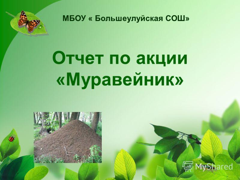 Отчет по акции «Муравейник» МБОУ « Большеулуйская СОШ»