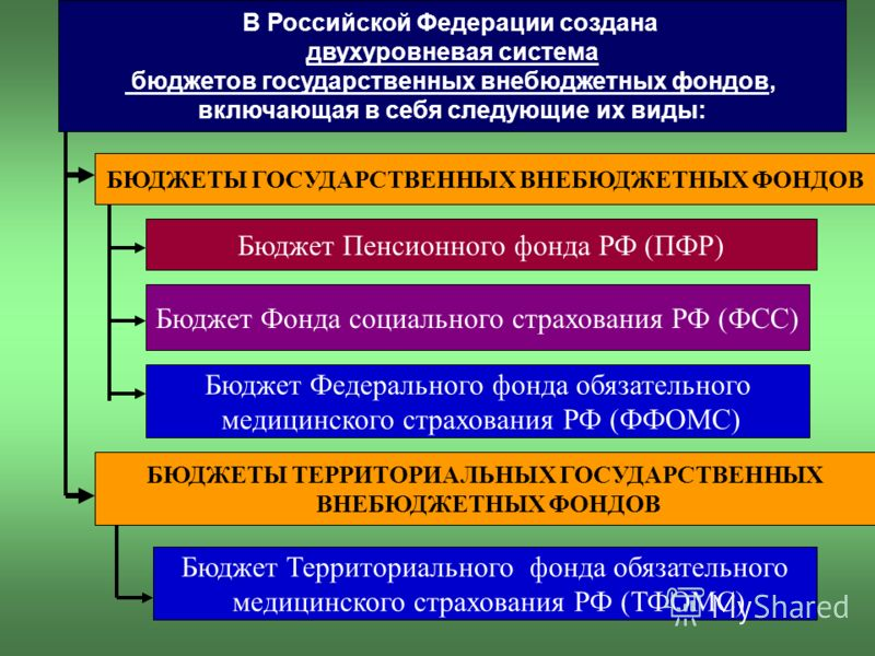 В Российской Федерации создана двухуровневая система бюджетов государственных внебюджетных фондов, включающая в себя следующие их виды: Бюджет Пенсионного фонда РФ (ПФР) Бюджет Федерального фонда обязательного медицинского страхования РФ (ФФОМС) Бюдж