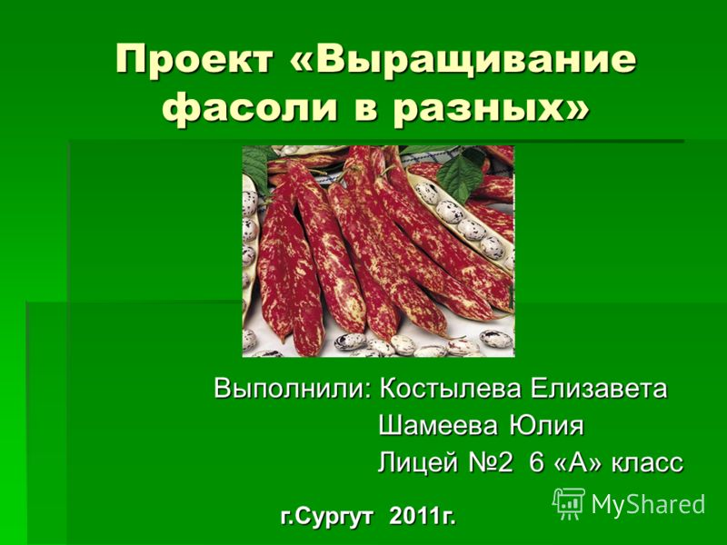Гдз История 10 Класс Баранов - картинка 1