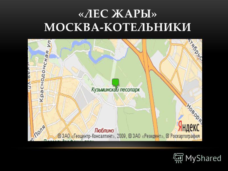 «ЛЕС ЖАРЫ» МОСКВА-КОТЕЛЬНИКИ