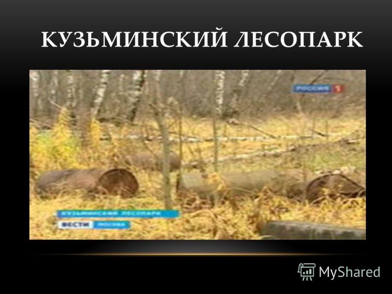КУЗЬМИНСКИЙ ЛЕСОПАРК