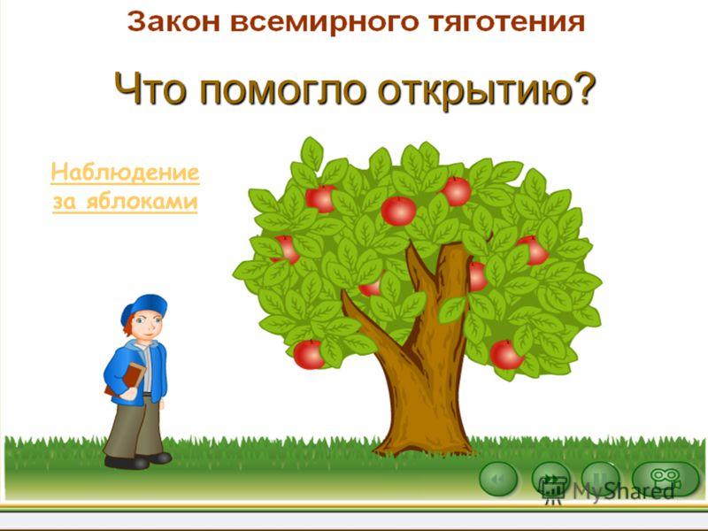 Что помогло открытию? Наблюдение за яблоками