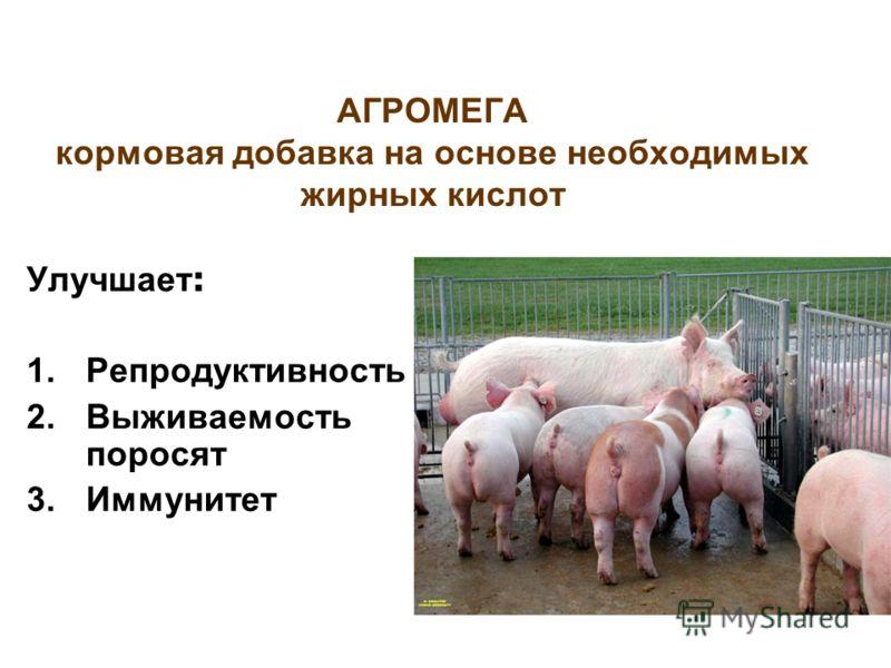 АГРОМЕГА кормовая добавка на основе необходимых жирных кислот Улучшает : 1.Репродуктивность 2.Выживаемость поросят 3.Иммунитет