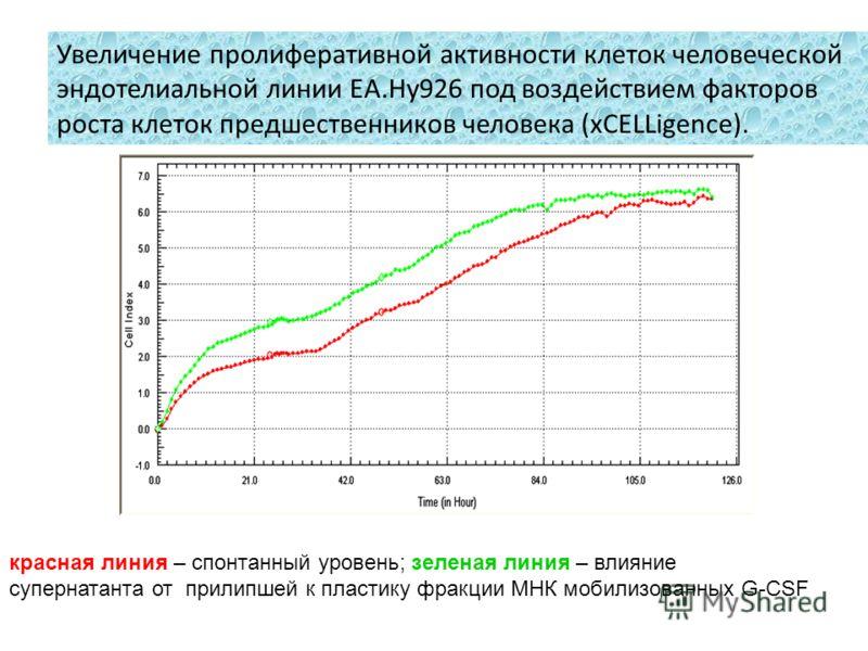 Увеличение пролиферативной активности клеток человеческой эндотелиальной линии EA.Hy926 под воздействием факторов роста клеток предшественников человека (xCELLigence). красная линия – спонтанный уровень; зеленая линия – влияние супернатанта от прилип