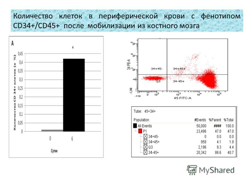 Количество клеток в периферической крови с фенотипом CD34+/CD45+ после мобилизации из костного мозга