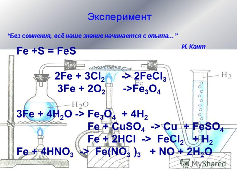 Fe +S = FeS 2Fe + 3Cl 2 -> 2FeCl 3 3Fe + 2O 2 ->Fe 3 O 4 3Fe + 4H 2 O -> Fe 3 O 4 + 4H 2 Fe + CuSO 4 -> Cu + FeSO 4 Fe + 2HCl -> FeCl 2 + H 2 Fe + 4HNO 3 -> Fe(NO 3 ) 3 + NO + 2H 2 O