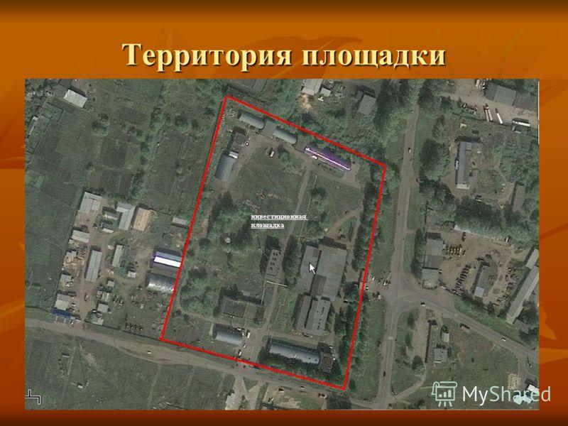 Территория площадки