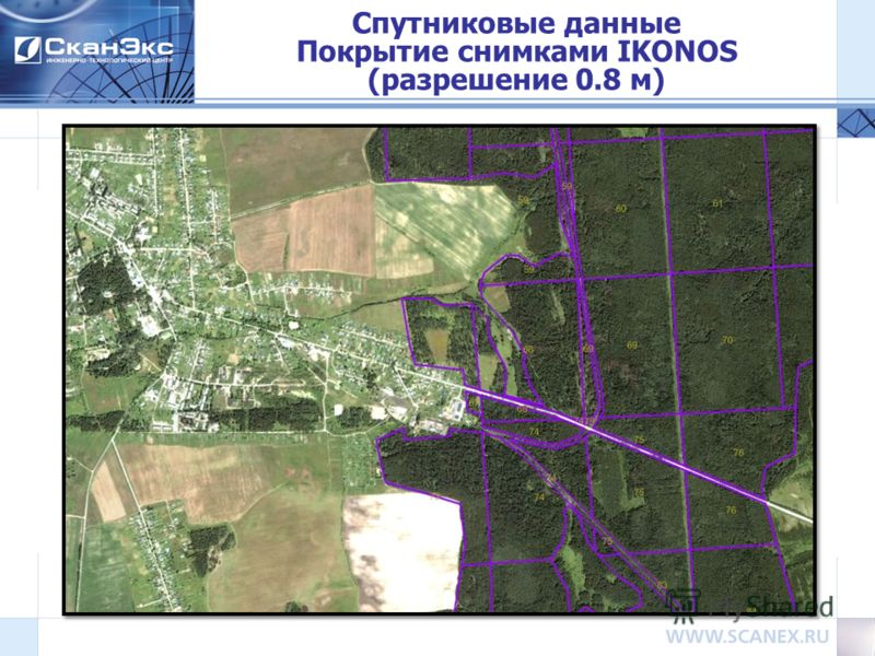 Спутниковые данные Покрытие снимками IKONOS (разрешение 0.8 м)