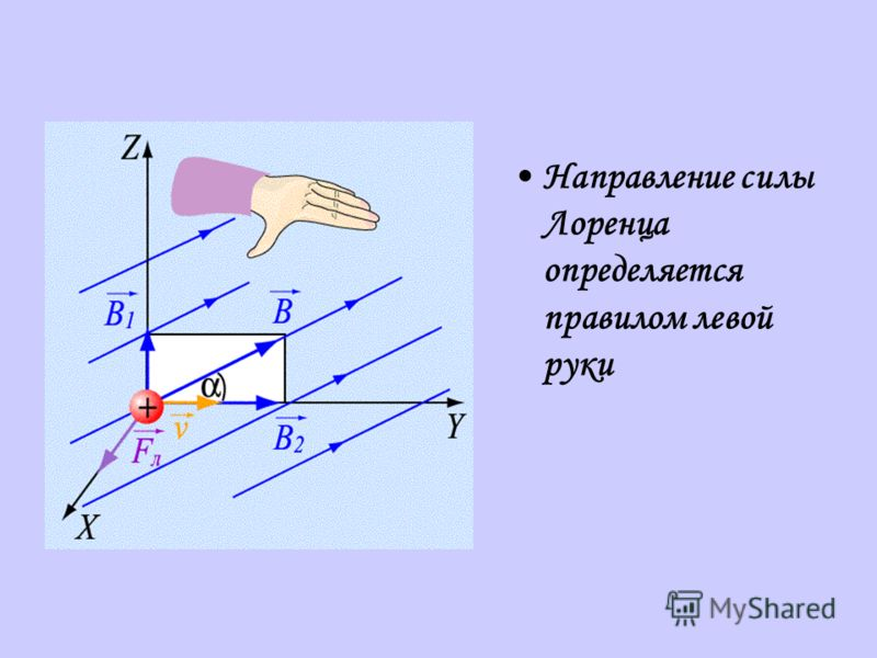 Направление силы Лоренца определяется правилом левой руки