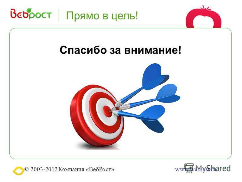 © 2003-2012 Компания «ВебРост»www.webrost.ru Прямо в цель! Спасибо за внимание!
