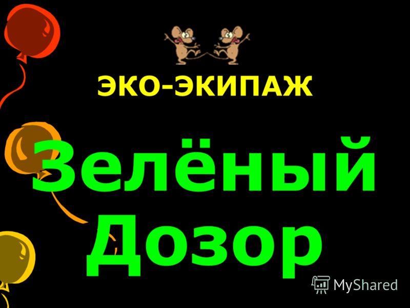 ЭКО-ЭКИПАЖ Зелёный Дозор